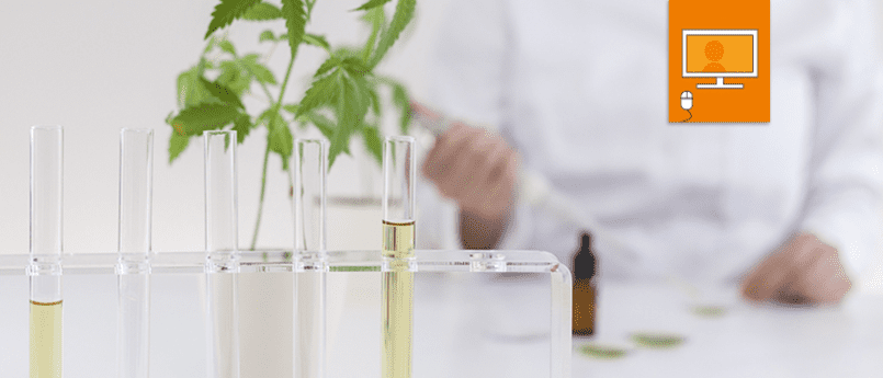 laboratory with test tubes and medicinal cannabis